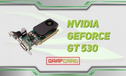 Обзор видеокарты nVidia Geforce GT 530 (OEM)